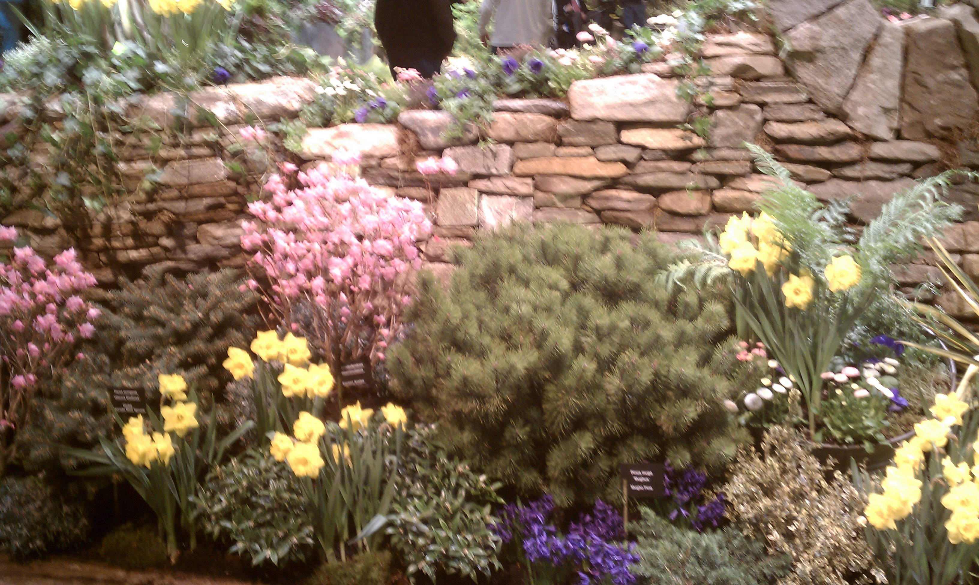 take new english cottage garden pictures images home design fancy under ideasnew england