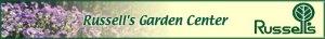 May 2011 City Garden Ideas