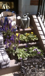Watering can, flowers and canvas bag on brownstone stoop