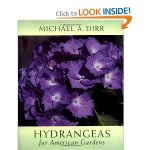 Hydrangeas for American Gardens by Michael Dirr