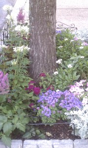 Garden in Bloom - Purple, pink and white flowers around a maple tree trunk
