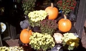 White and purple mums with three orange pumpkins