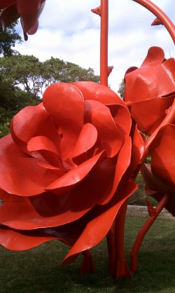 Sculpted Red Roses