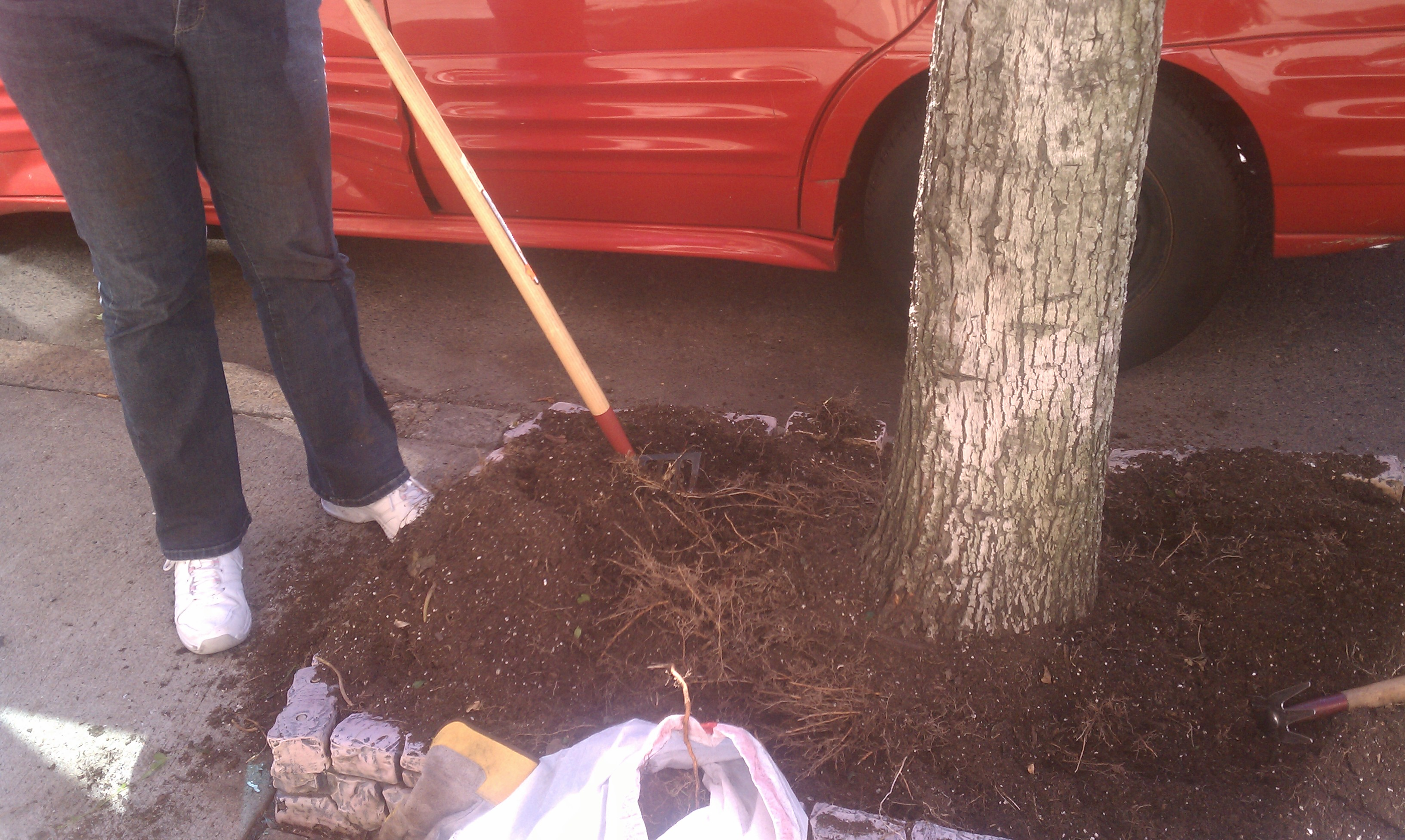 March | 2012 | City Garden Ideas