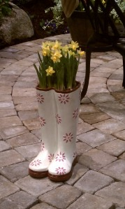 Daffodils planted in white rain boots