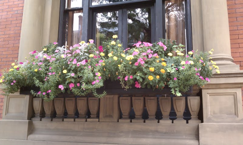 Urban gardening ideas for small spaces city garden ideas for Urban garden designs